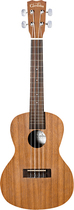 Cordoba - UP100 4-String Concert-Size Ukulele Pack - Natural
