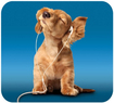 Handstands - Deluxe Music Dog Mouse Pad - Blue/Tan
