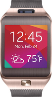 Samsung - Gear 2 Smart Watch with Heart Rate Monitor - Gold/Brown