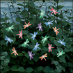 Smart Solar - Dragonfly Solar String Lights - Multicolor