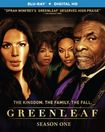 Greenleaf: Season 1 [blu-ray] [2 Discs] 5657487