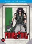 Fairy Tail: Part 22 [blu-ray/dvd] [4 Discs] 5712622