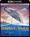 Humpback Whales [includes Digital Copy] [4k Ultra Hd Blu-ray/blu-ray] 5723345