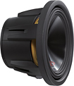 "Alpine - Type-R 10"" Dual-Voice-Coil 2-Ohm Subwoofer"