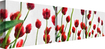 Trademark Art - Red Tulips from Bottom Up by Michelle Calkins (3-Piece Set) - Red
