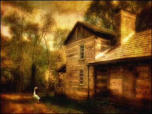 Trademark Art - Family Farm III by Lois Bryan - Multicolor