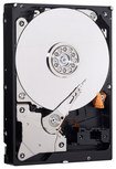 WD - Blue 320GB Internal Serial ATA Hard Drive for Laptops (OEM/Bare Drive) - Black/Silver
