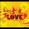 Love [bonus Dvd] [cd & Dvd] - Cd 8138259