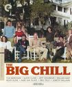 The Big Chill [criterion Collection] [2 Discs] [blu-ray/dvd] 8191647