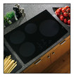 "GE Appliance - Profile 30"" Electric Induction Cooktop - Black"