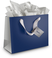 Best Buy Exclusive - Small Gift Bag - Navy Blue/Silver