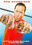 Big Stan (dvd) 9214414