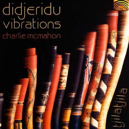 Didjeridu Vibrations [CD] 12158728