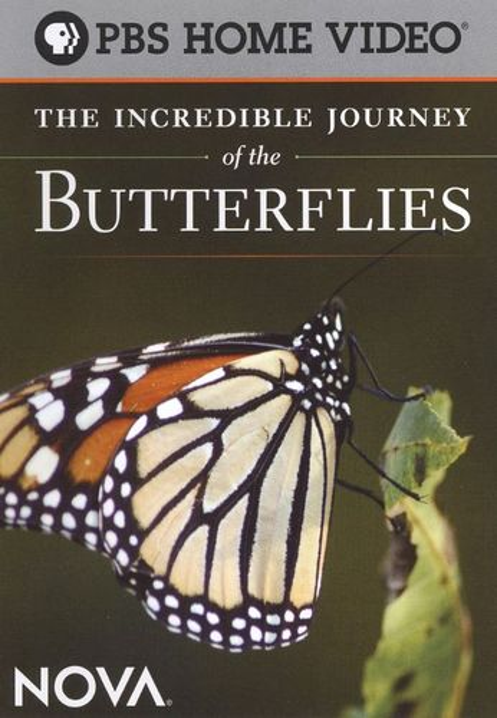 NOVA: The Incredible Journey of the Butterflies [DVD] [2008] 17671636