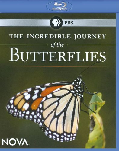 NOVA: The Incredible Journey of the Butterflies [Blu-ray] [2008] 17865446