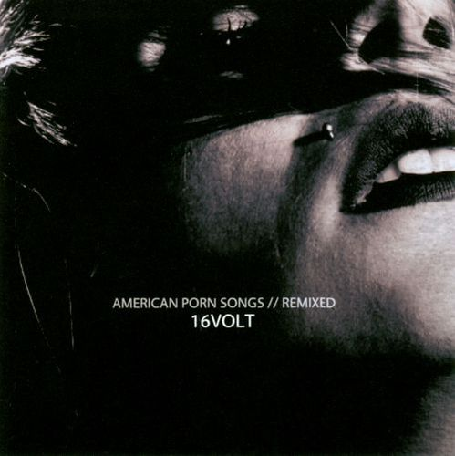 American Porn Songs: Remixed [CD] 18519822