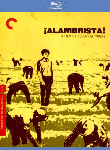 Alambrista! [Criterion Collection] [Blu-ray] [1977] 19890968