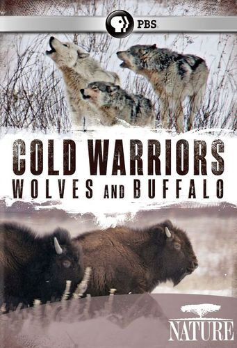 Nature: Cold Warriors - Wolves and Buffalo [DVD] [2013] 21000342