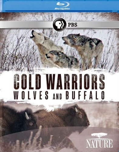 Nature: Cold Warriors - Wolves and Buffalo [Blu-ray] [2013] 21000351