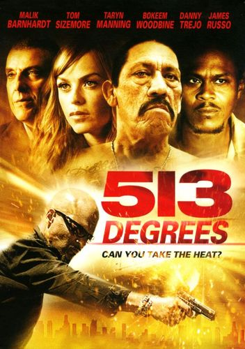 513 Degrees [DVD] [2013] 24260257