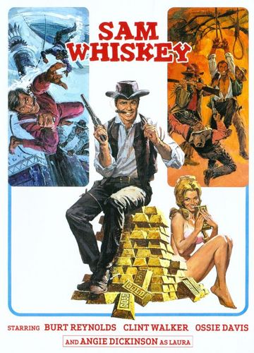Sam Whiskey [DVD] [1969] 25771231