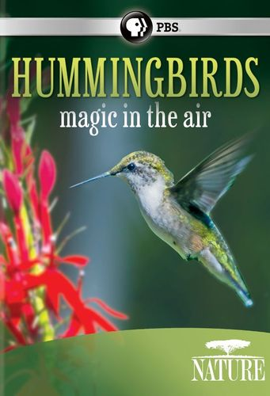 Nature: Hummingbirds: Magic in the Air [DVD] [2010] 25791441