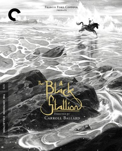 The Black Stallion [Criterion Collection] [DVD] [1979] 27920222