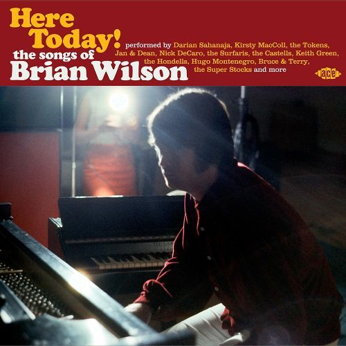 Here Today!: The Songs of Brian Wilson [CD] 28253147