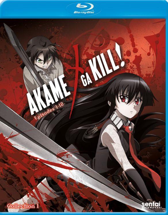 Akame Ga Kill!: Collection 1 [Blu-ray] [2 Discs] 29821153