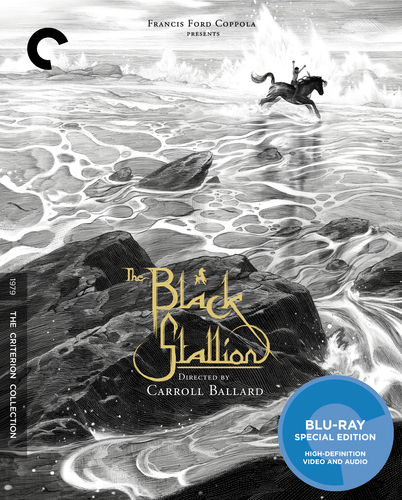 The Black Stallion [Criterion Collection] [Blu-ray] [1979] 4361957