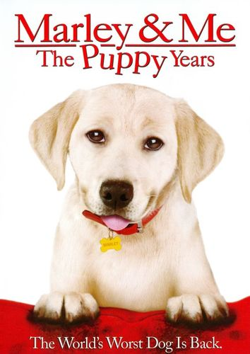 Marley & Me: The Puppy Years [DVD] [2011] 4407625