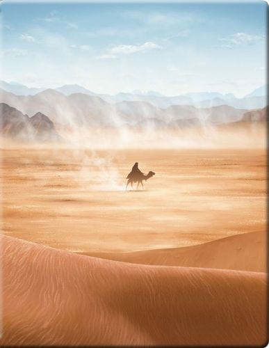 Lawrence of Arabia [Blu-ray] [SteelBook] [1962] 4610404