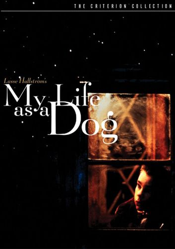 My Life as a Dog [Criterion Collection] [DVD] [1985] 5281964