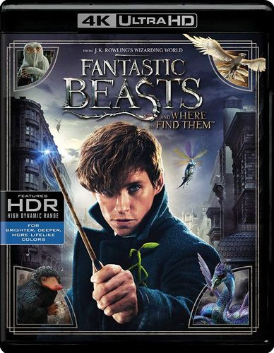 Fantastic Beasts and Where to Find Them [Includes Digital Copy] [4K Ultra HD Blu-ray/Blu-ray] [2016] 5669905