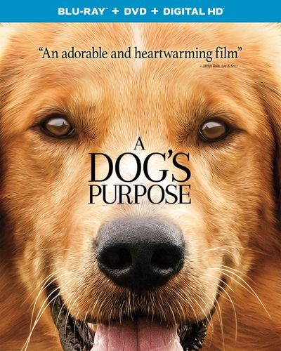 A Dog's Purpose [Includes Digital Copy] [UltraViolet] [Blu-ray/DVD] [2 Discs] [2017] 5774707