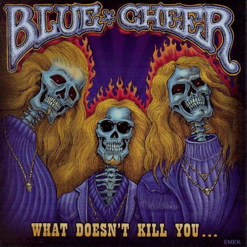 What Doesn't Kill You [CD] 8444631