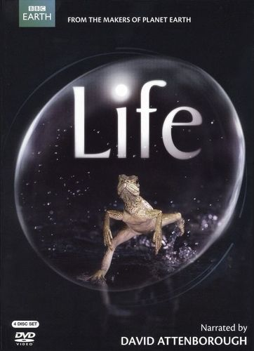 Life (Narrated By David Attenborough) [4 Discs] [DVD] 9998342