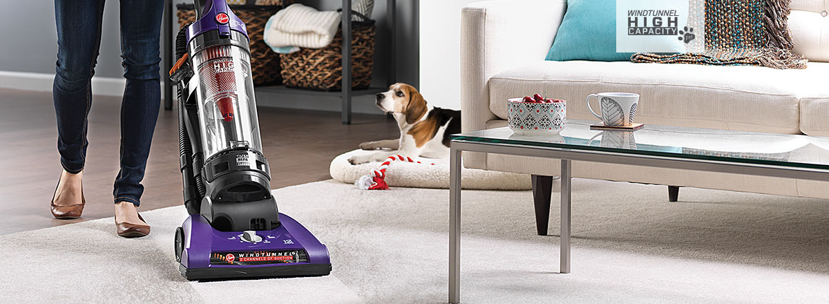 WindTunnel 2 High Capacity vacuum, great for pets, dog