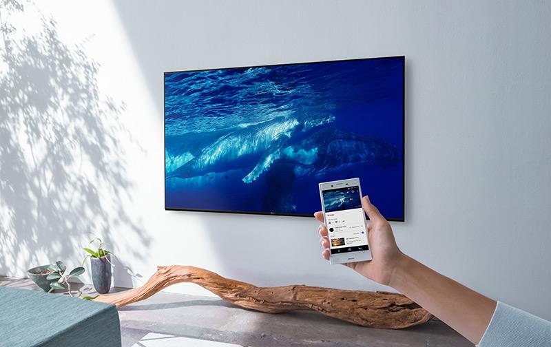 TV, hand holding smartphone